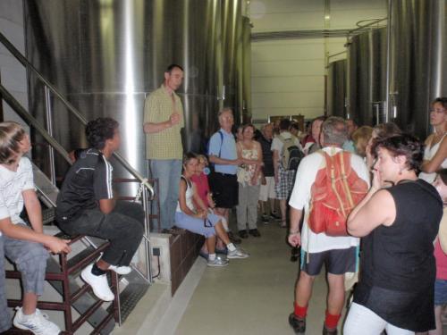 visite de la cave viticole